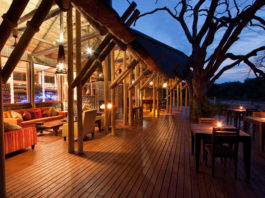 Assistant Game Lodge Manager
